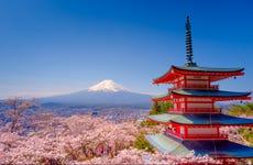 Cerezos en flor en Yamanashi