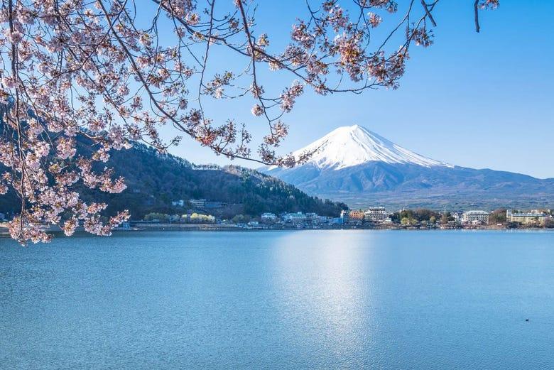 Mount Fuji Lake Kawaguchi Gotemba Premium Outlets Day Trip Tokyo