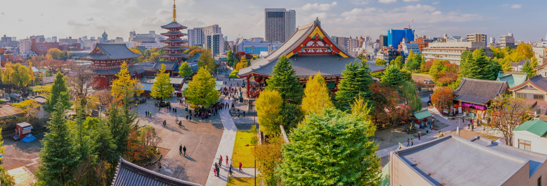 Oferta: Tour por Asakusa y Akihabara