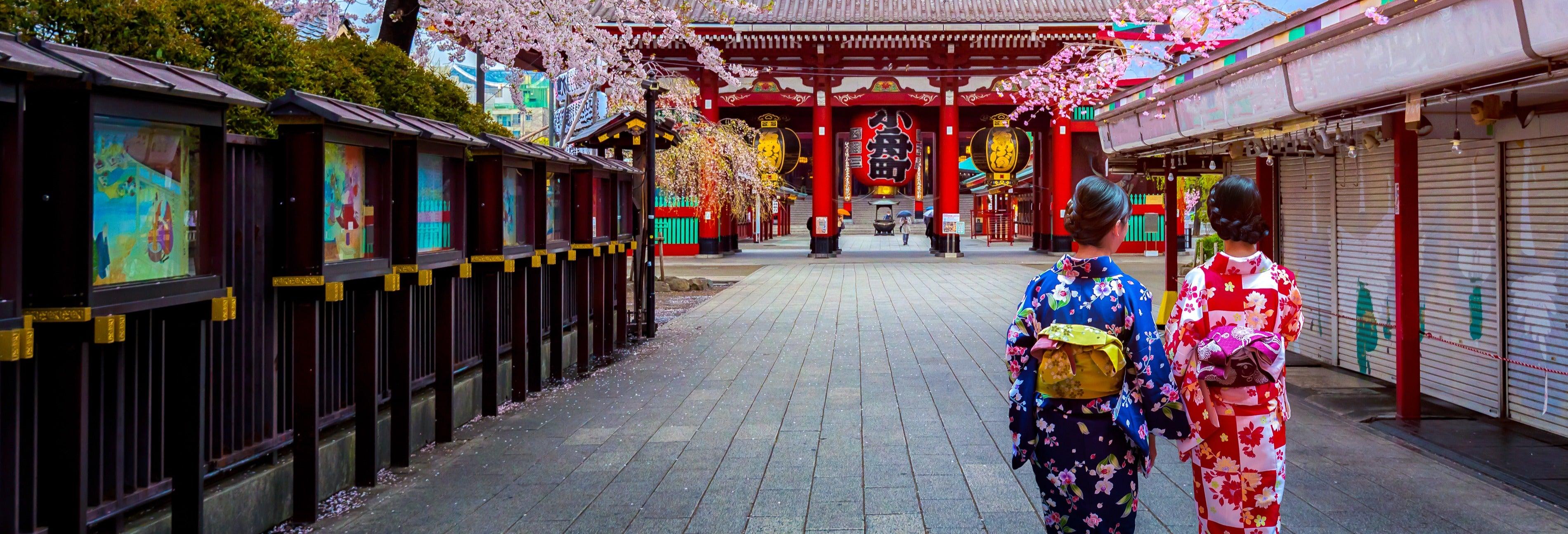 Tour privato di Tokyo