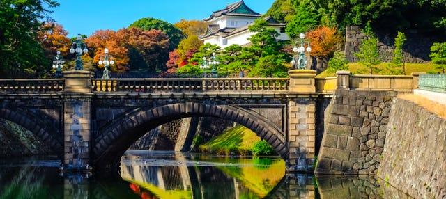 Tour de Tokio al completo