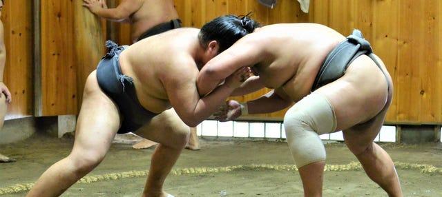 Biglietti per assistere a un allenamento di sumo