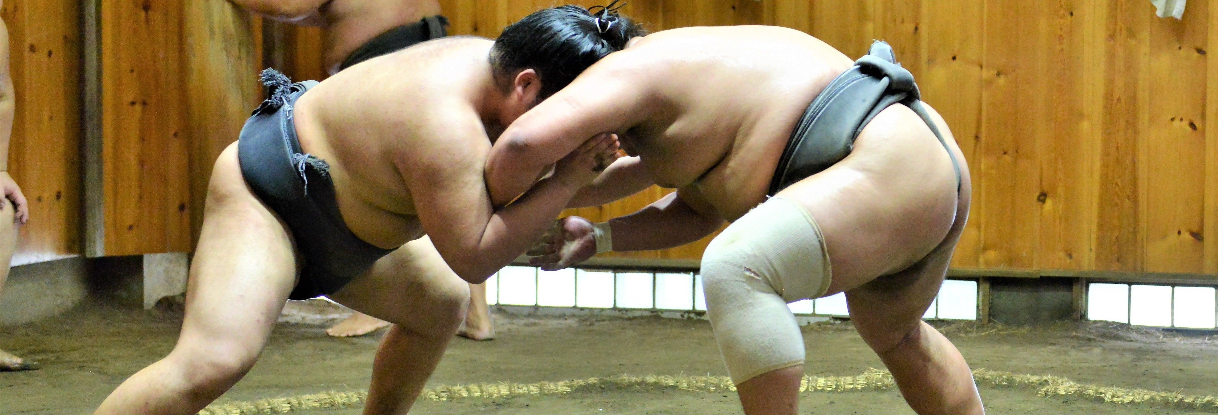 Ticket d'entrée pour assister à un entraînement  de sumo