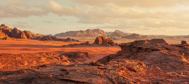 Excursión a Wadi Rum