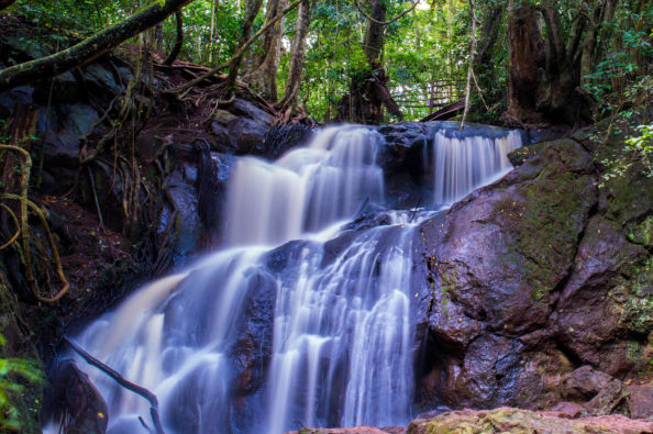 Waterfalls in the Karura forest