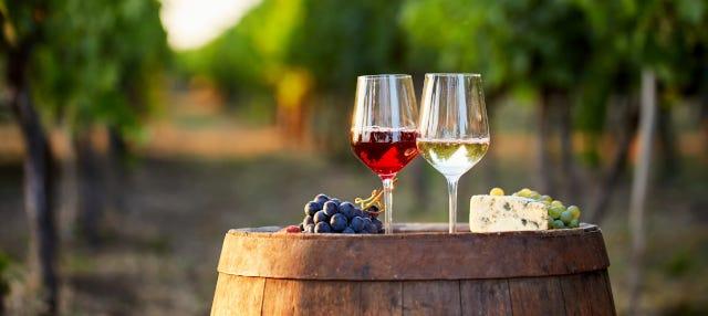 Tour de vinos por el Valle de Beqaa