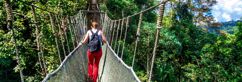 Excursão ao Parque Kinabalu e às termas de Poring