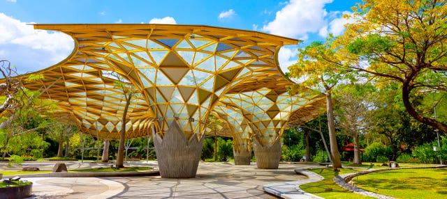 Visita guiada por el Jardín Botánico Perdana