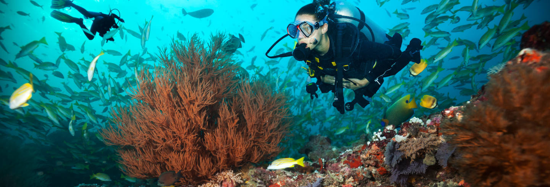 Mergulho em Maafushi