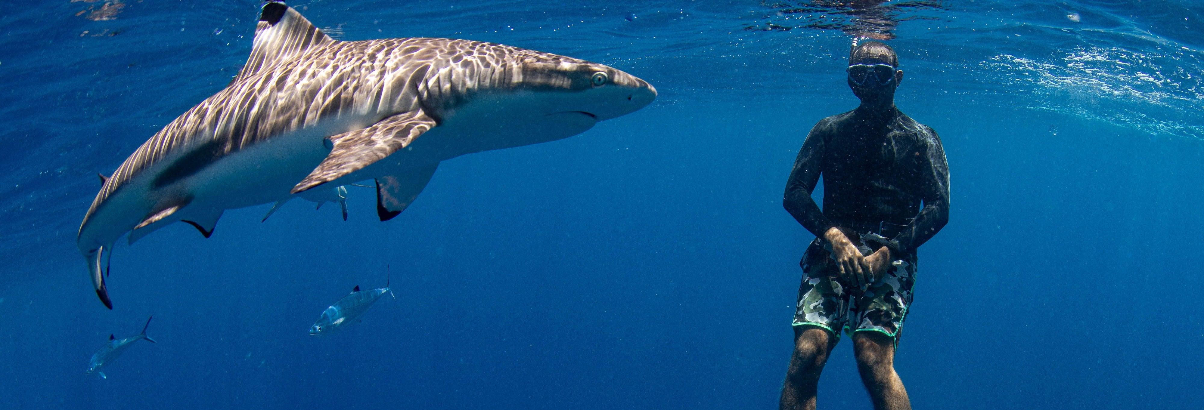 Maafushi Snorkeling Tour