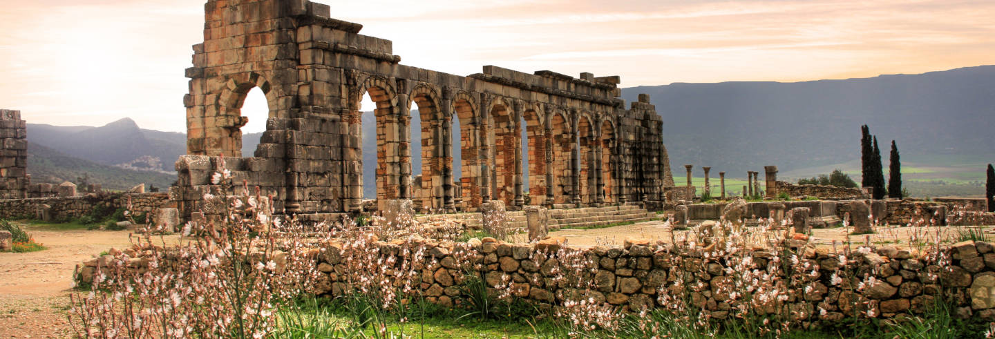 Excursão privada a Volubilis, Moulay Idriss e Meknes