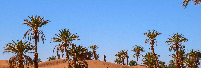 2 Day Zagora Desert Trip
