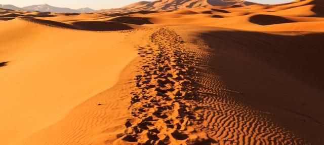 Excursión de 3 días al desierto de Merzouga acabando en Fez