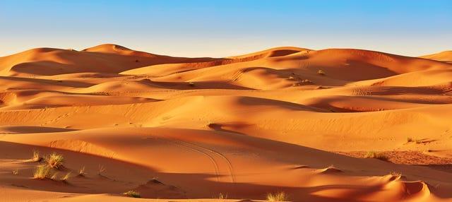 Excursión privada al desierto