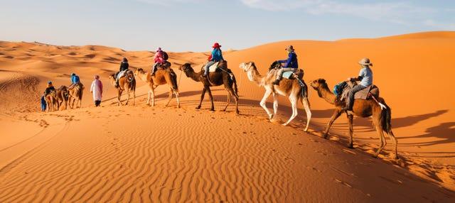 Tour de 8 días por Marruecos