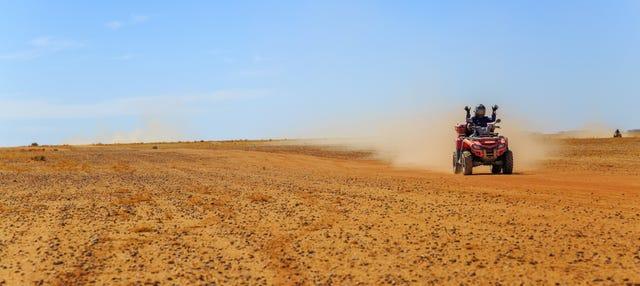 Tour en buggy + Paseo en camello