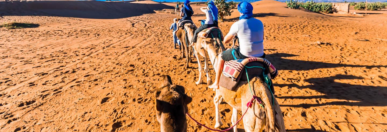 Quad Bike, Camel Ride & Hammam Tour