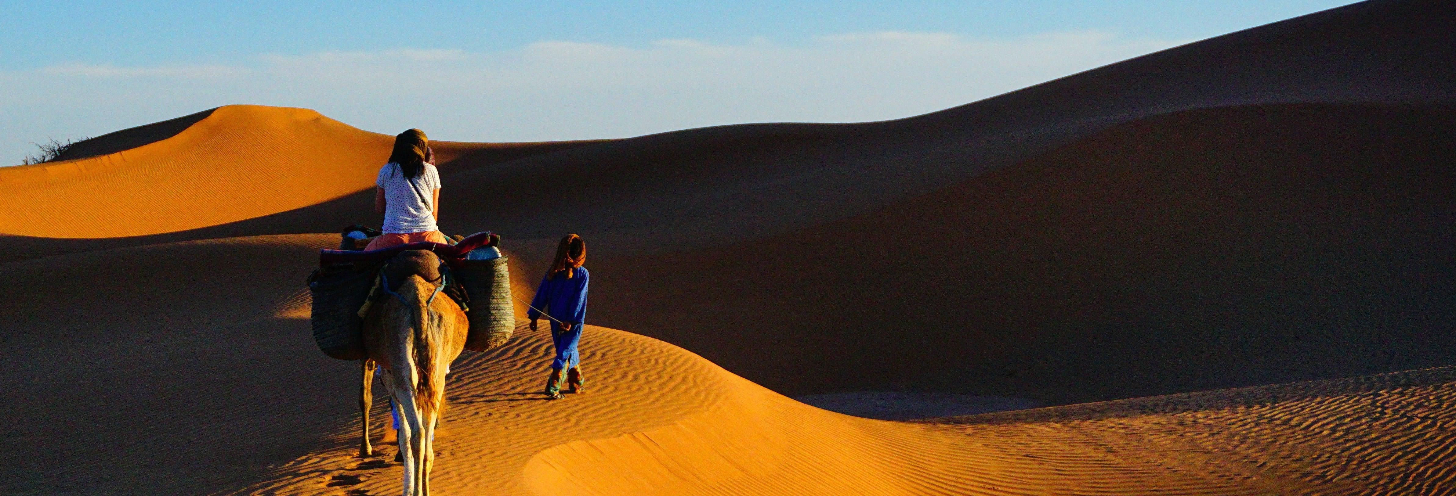 Balade à dos de chameau et nuit dans le désert