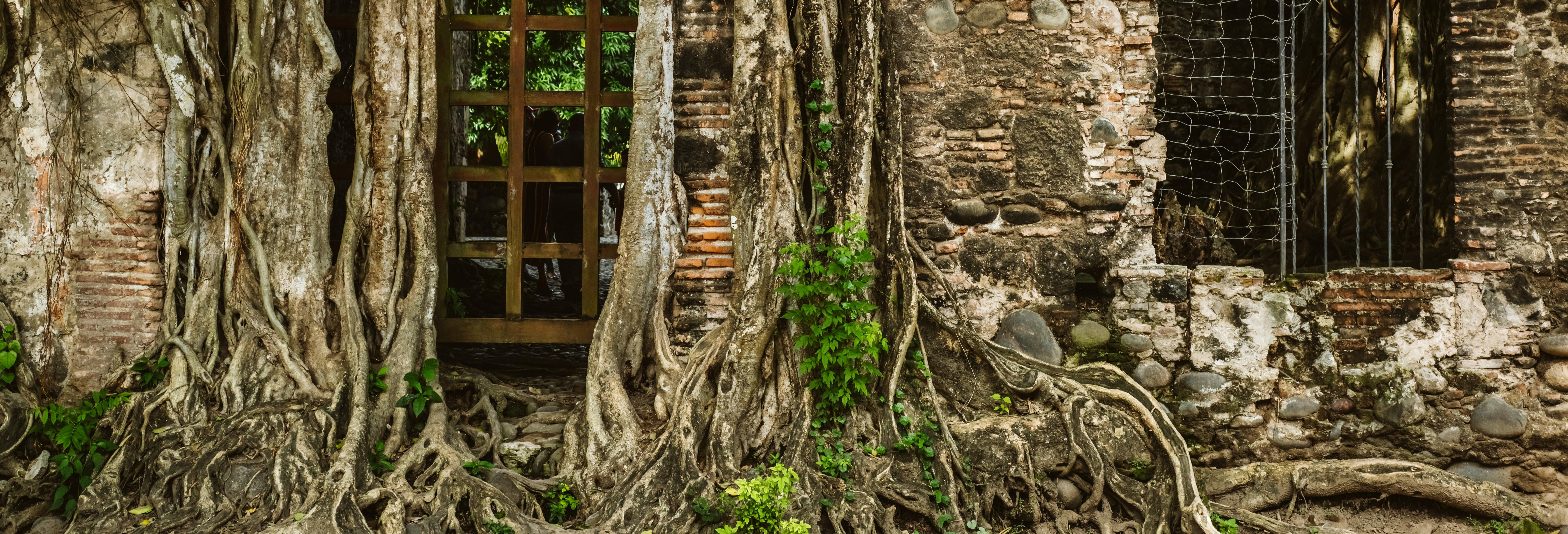 Excursión a La Antigua + Paseo en lancha