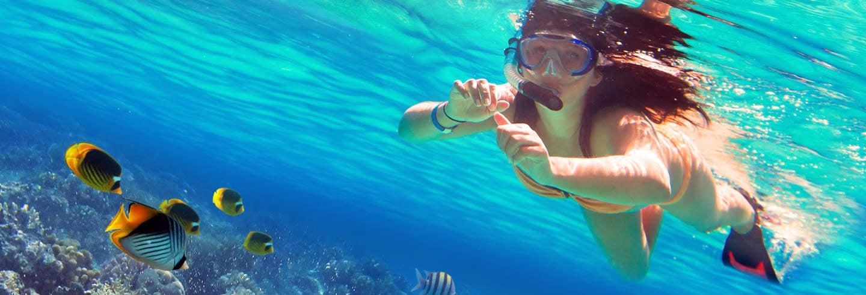 Snorkel at Isla de Enmedio
