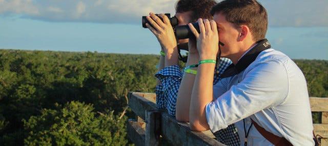 Avistamiento de aves en Reserva Nativa