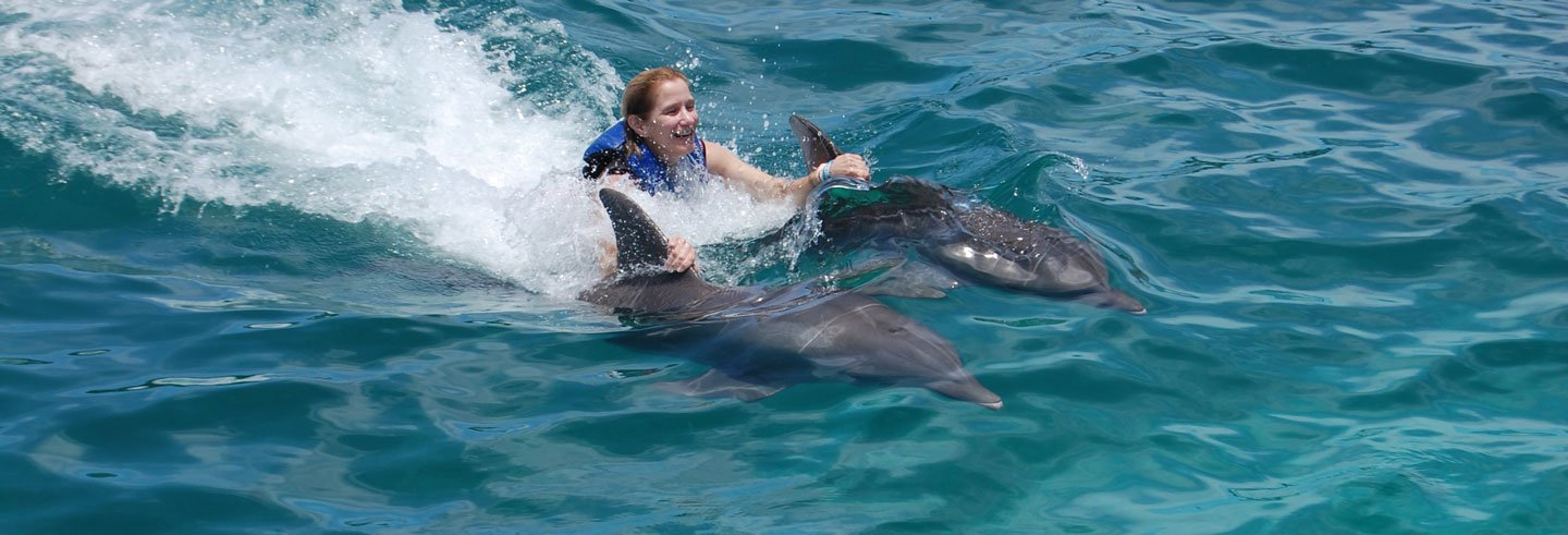 Isla Mujeres Swimming with Dolphins