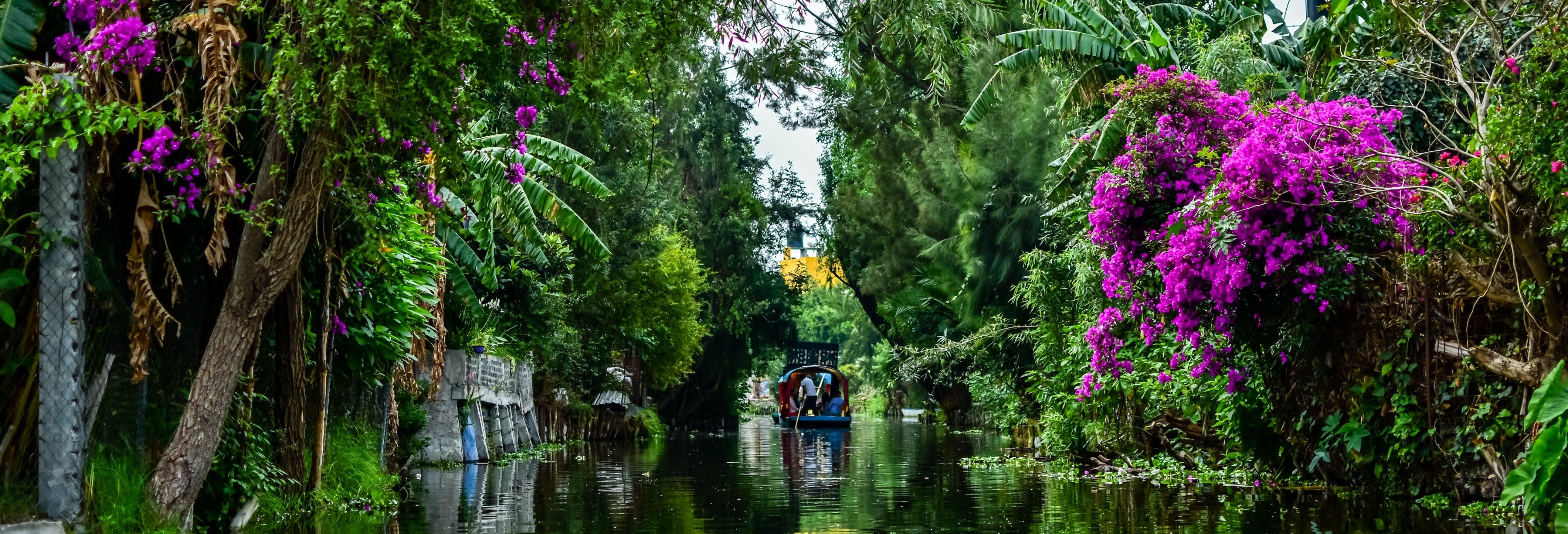 Tour por Xochimilco e bairro de Coyoacán