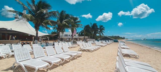 Excursión a una playa privada + Snorkel
