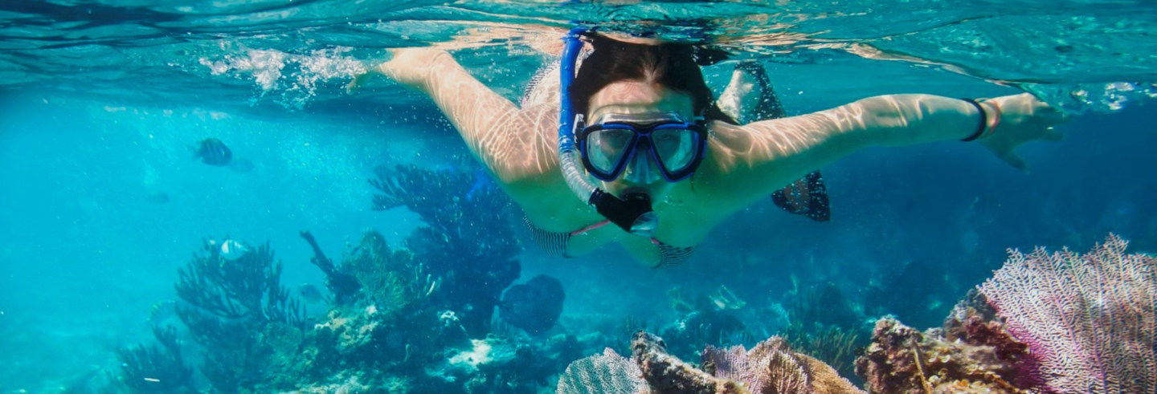 Paseo en catamarán por Cozumel + Snorkel