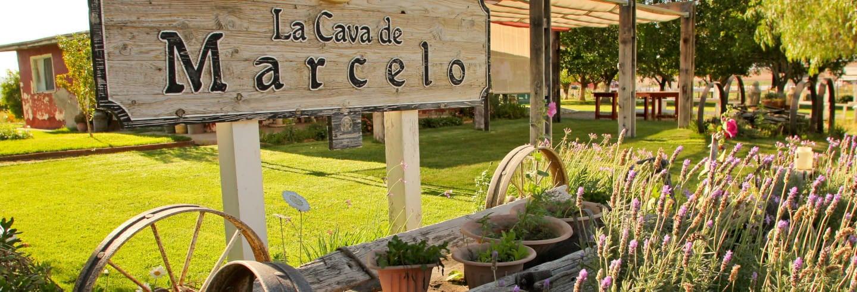 Cata de vino y queso en el Valle de Ojos Negros desde Ensenada