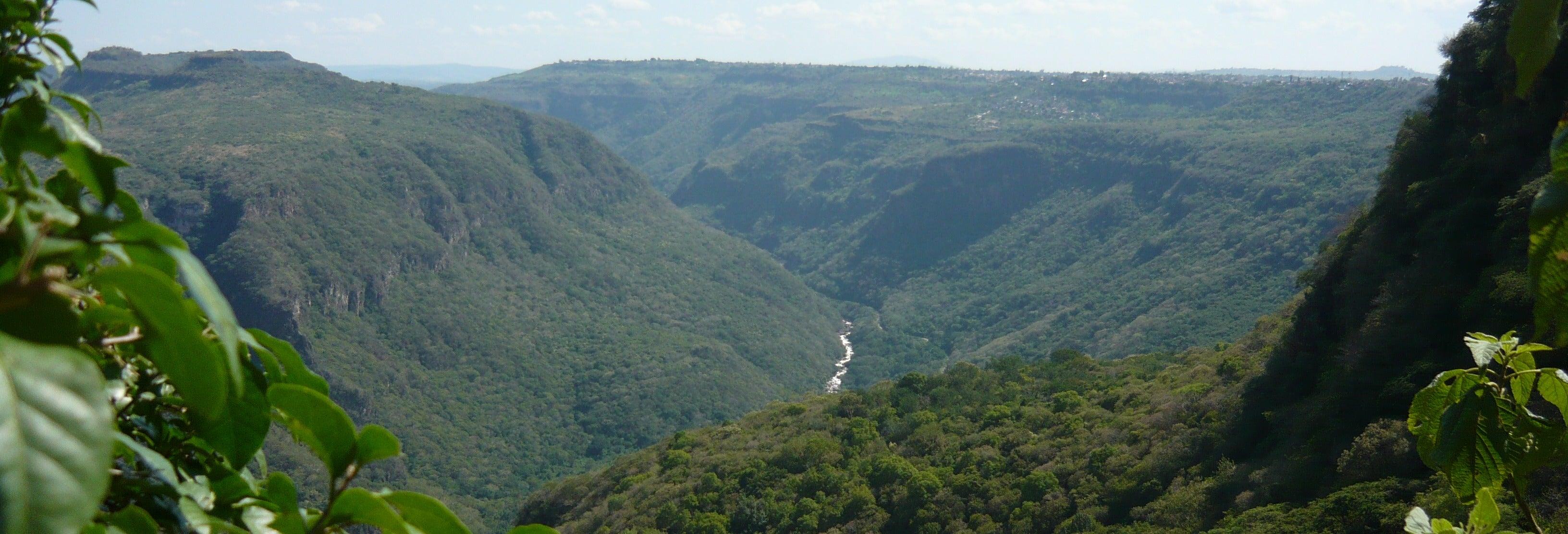 Excursión de senderismo por la Barranca de Huentitán desde Guadalajara