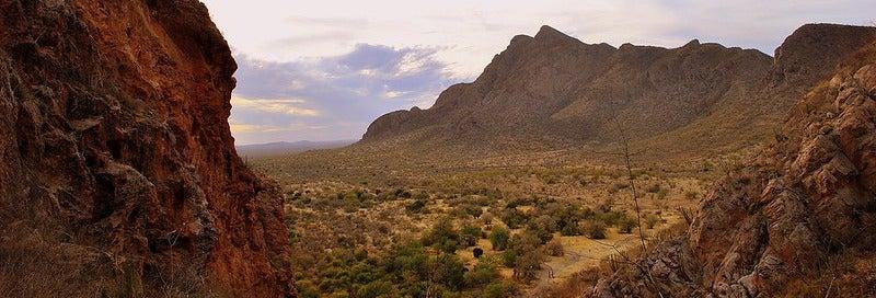 Excursión de senderismo por La Pintada desde Hermosillo
