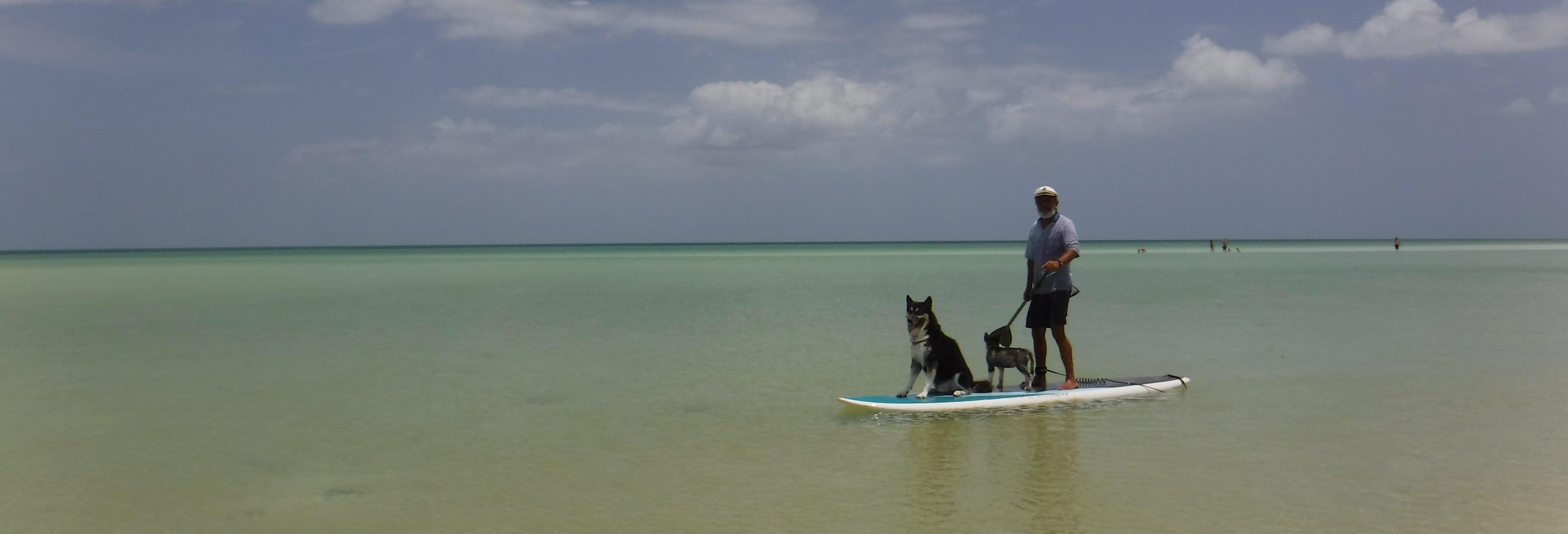 Excursión en Paddle surf en Holbox