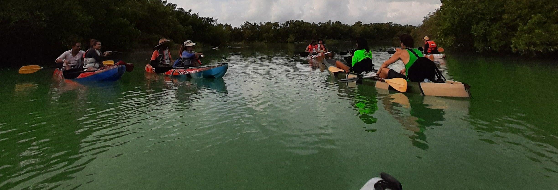 Excursión en kayak por Holbox