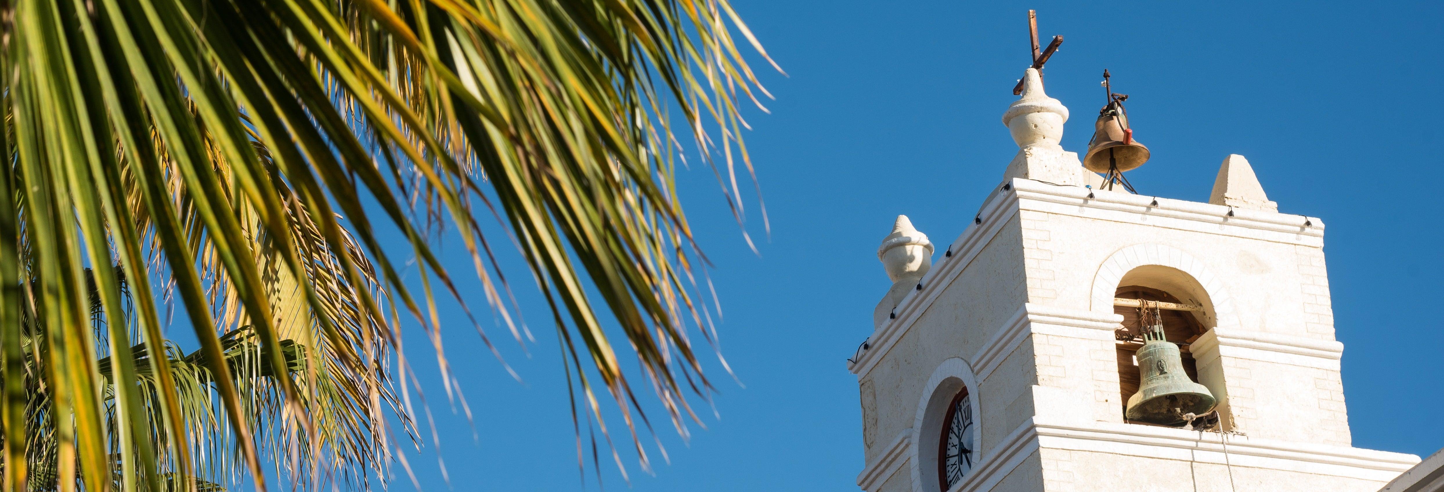 Excursão a La Paz, trópico de Câncer e Todos Santos