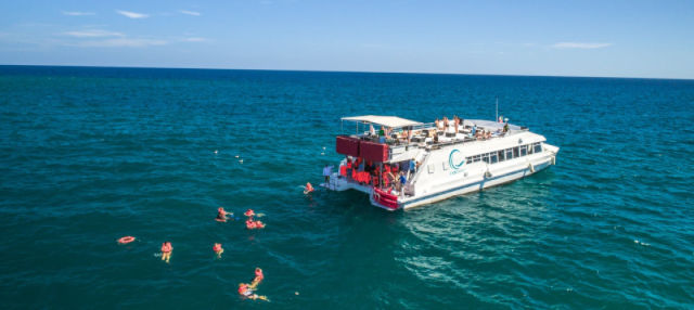 Passeio de catamarã pelo Mar de Cortés