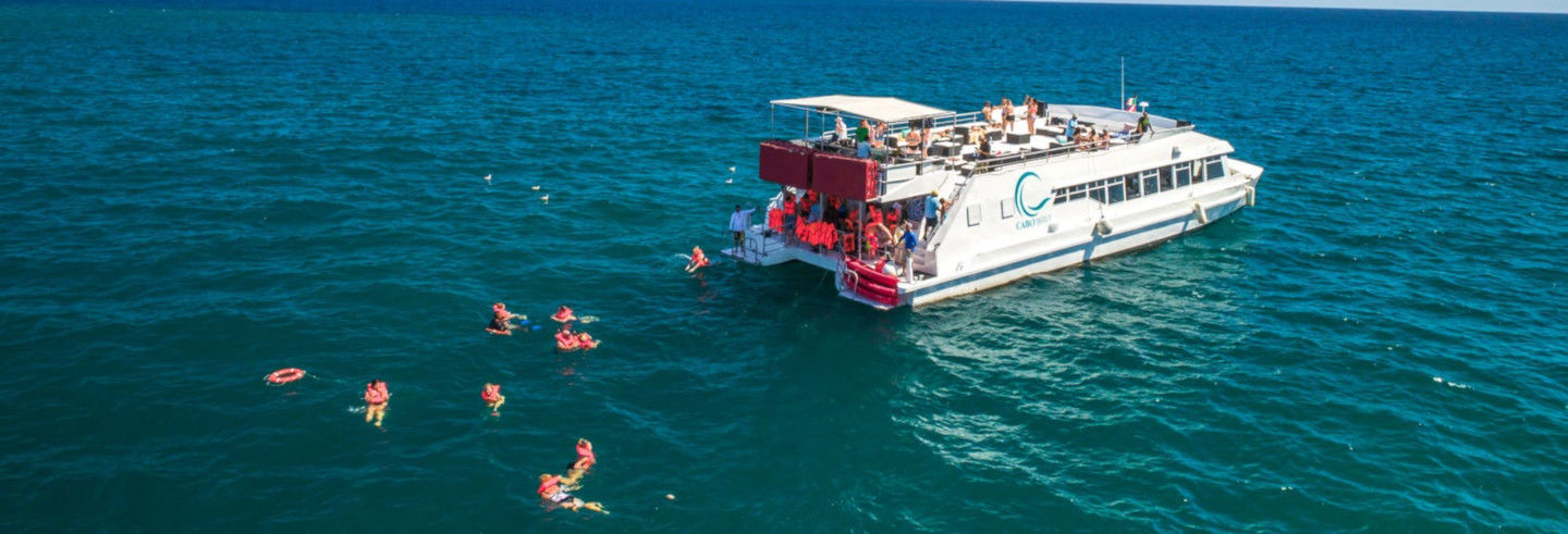 Giro in catamarano nel Golfo di California