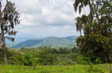 Senderismo por el Parque Natural La Estanzuela