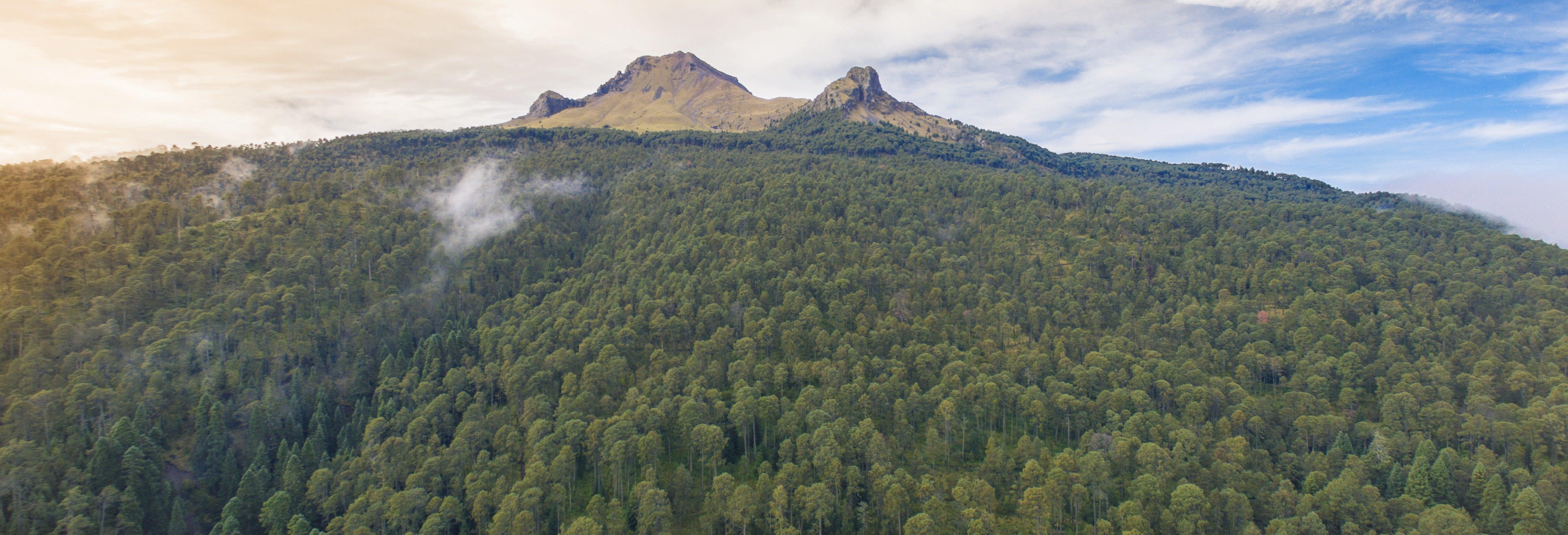 Senderismo por el Parque Nacional La Malinche