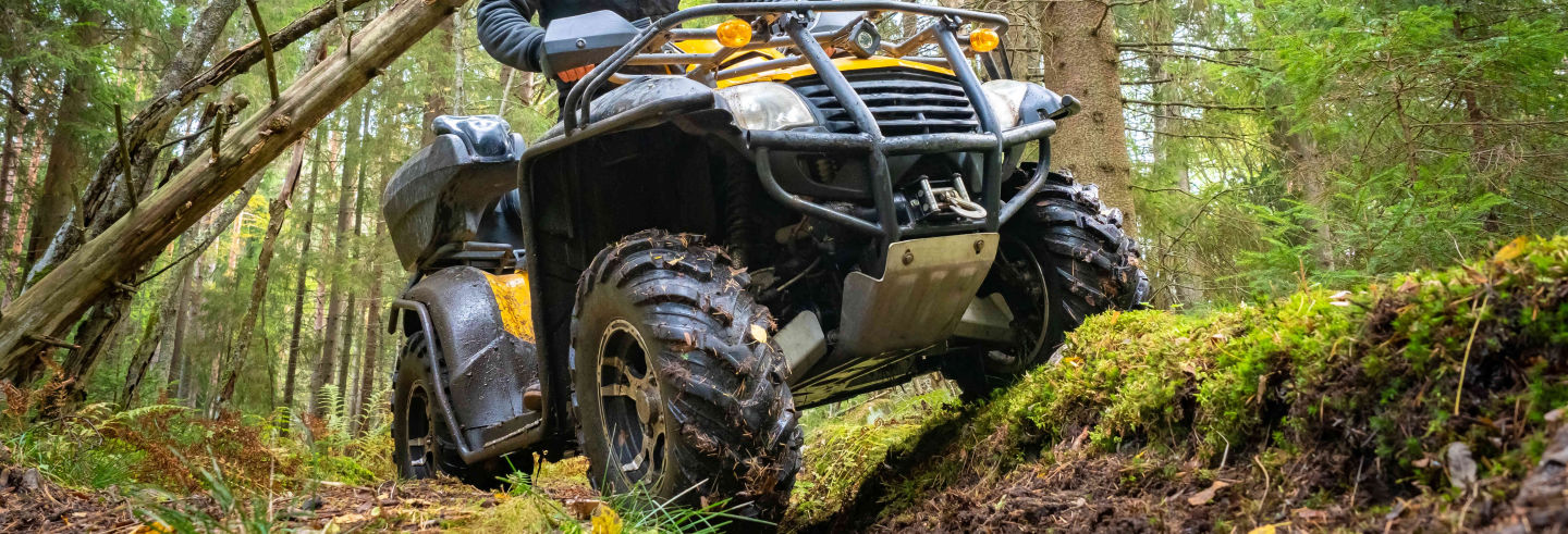 Tour en quad por la Sierra Madre