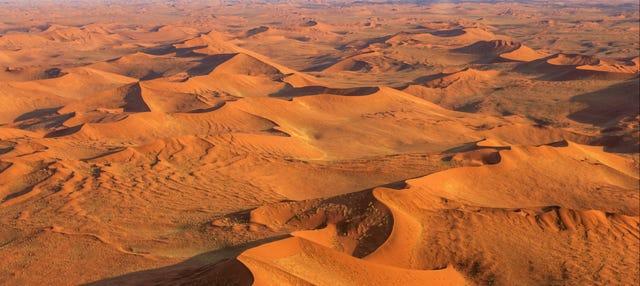 Visite du désert du Namib