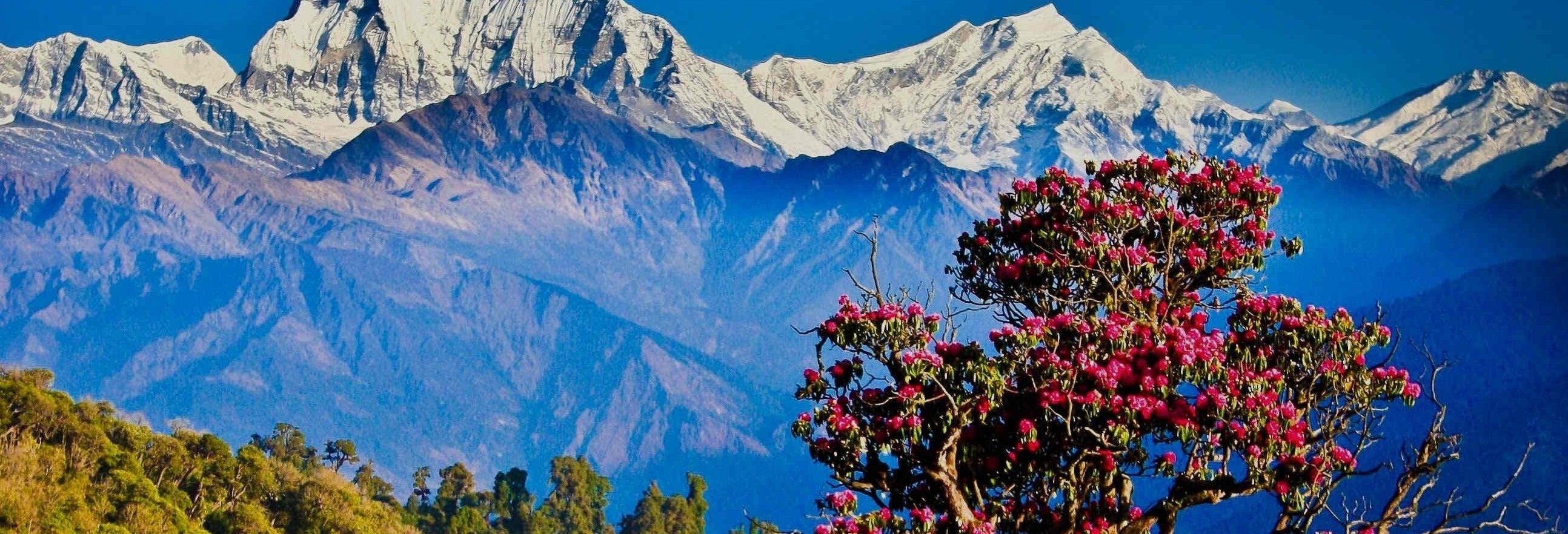 Trekking de 3 días por Poon Hill y Ghorepani