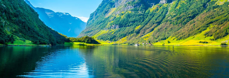 Tour por el fiordo de Nærøy para cruceros
