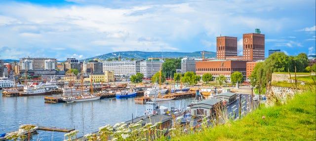Crociera estiva sul fiordo di Oslo