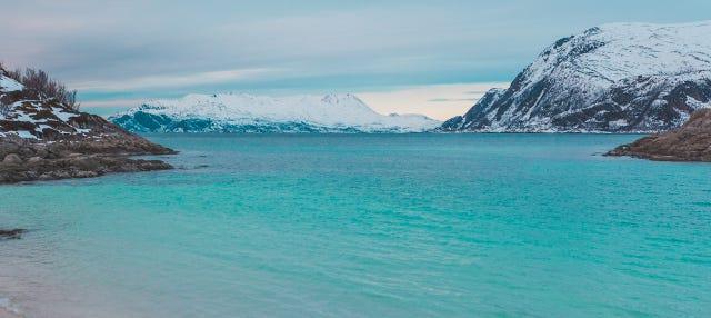 Excursión a los fiordos noruegos