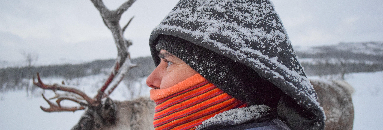 Visita a un campamento sami + Granja de renos