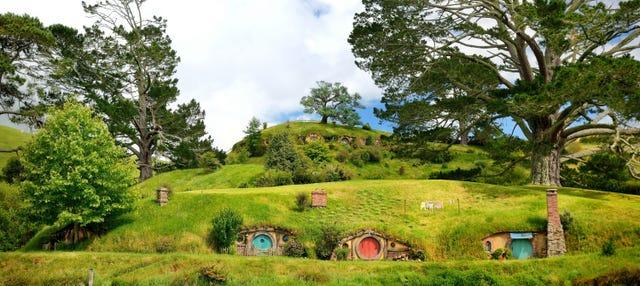 Excursión a Hobbiton y Rotorua
