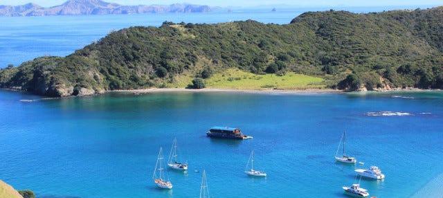 Excursión en barco por Bahía de las Islas
