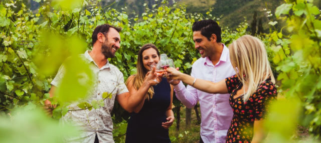 Tour del vino por Gibbston
