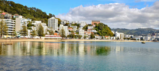 Autobús turístico de Wellington